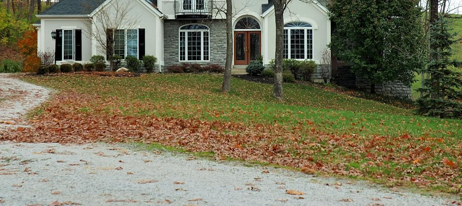 Leaves littering the front lawn of a home in Canonsburg, ready for a fall yard clean up.