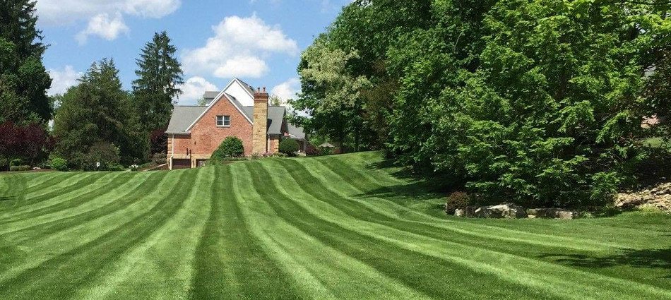 Recently mowed large lawn with mowing stripes at home in McMurray, PA.