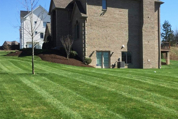 Home in McMurray, PA with professional lawn care and landscaping services.